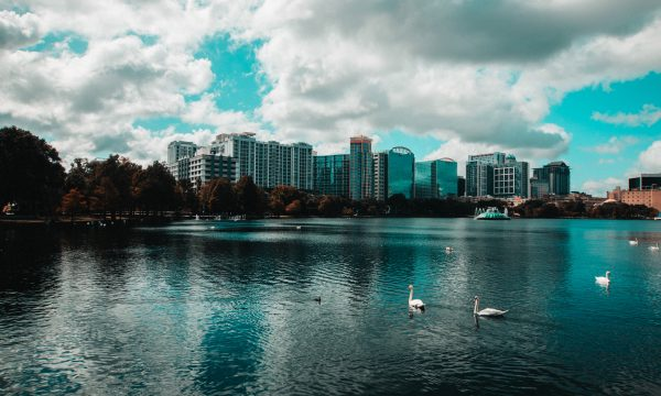 Beautiful fountain and city view at Lake Eola in downtown Orlando (courtesy of axel-vazquez on Unsplash).